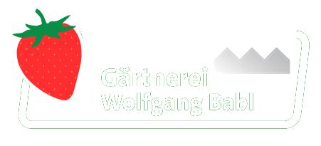Gärtnerei Wolfgang Babl - Babl Erdbeeren